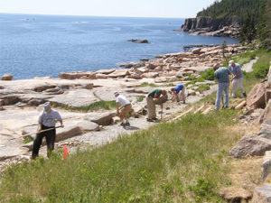 internship shore cleanup
